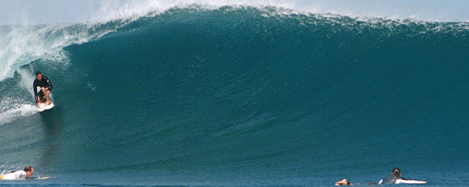 rote timor surf