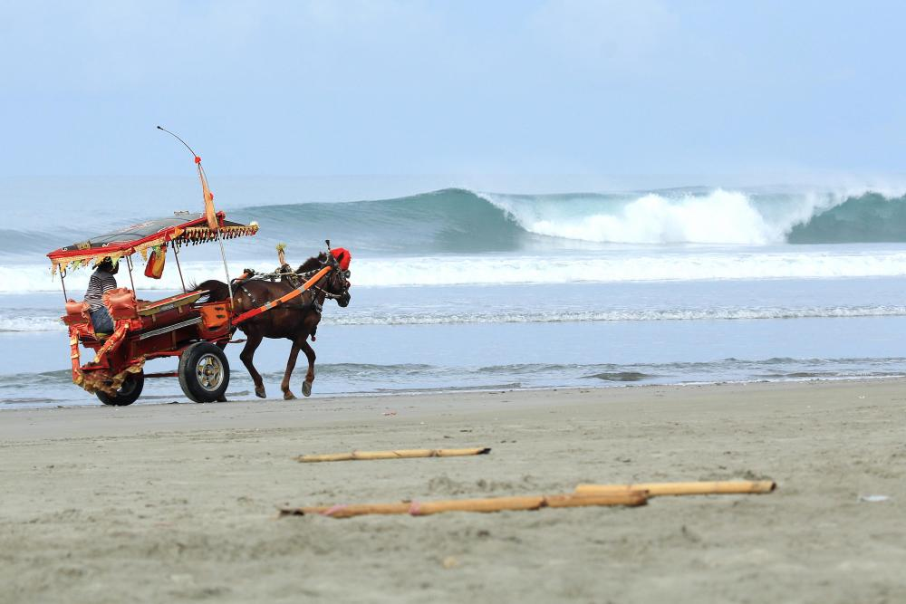 Dokar surf buggy, Pantai Panjang. Photo Timo Pramulya