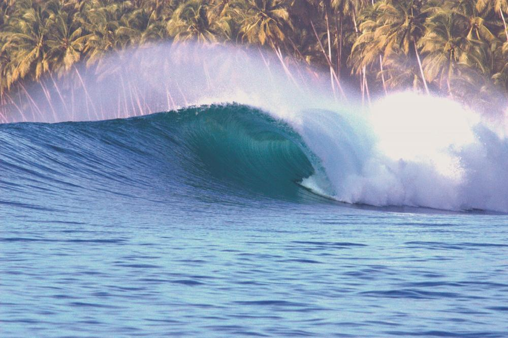 Photo Scuzz www.sumatransurfariis.com
